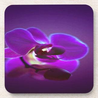 Orquídea púrpura posavasos de bebidas