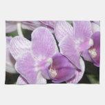 Orquídea púrpura toalla de cocina