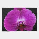 Orquídea púrpura toallas de mano