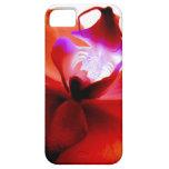Orquídea que soña el caso iPhone5 iPhone 5 Case-Mate Protector