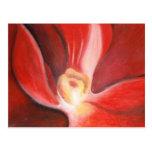 Orquídea roja postal