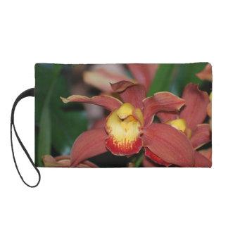 Orquídea roja y amarilla