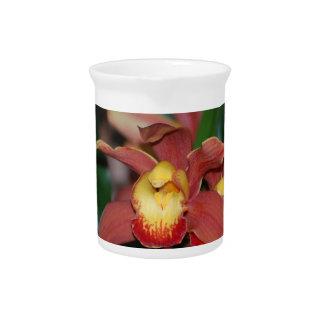 Orquídea roja y amarilla jarrón