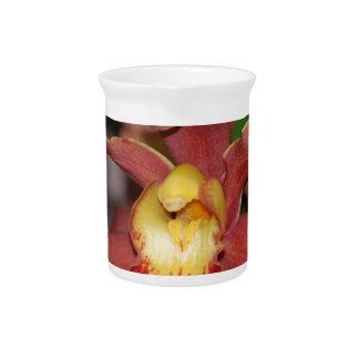 Orquídea roja y amarilla jarras de beber