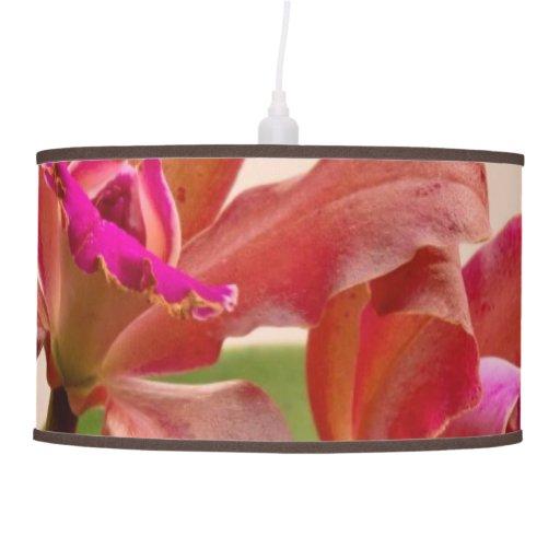 Orquídea - rosa cosquilleado