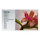 Orquídea - rosa cosquilleado plantilla de tarjeta personal