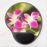 Orquídea rosada alfombrilla con gel