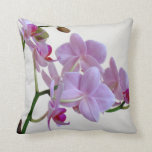 Orquídea rosada almohada
