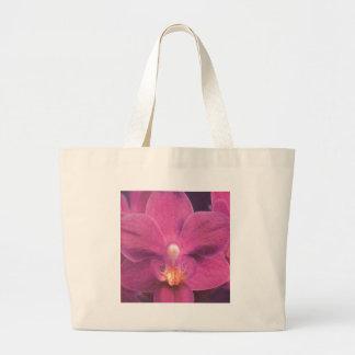 Orquídea rosada bolsa