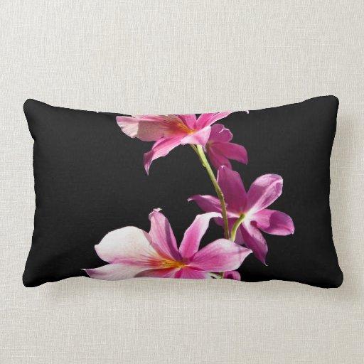 Orquídea rosada cojines