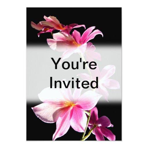 Orquídea rosada comunicados personales