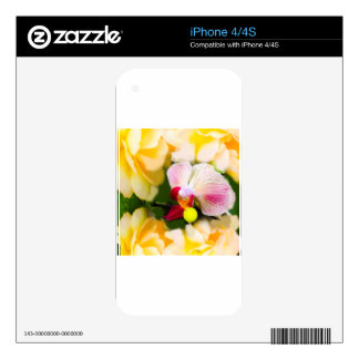 Orquídea rosada con la pelota de tenis calcomanías para iPhone 4