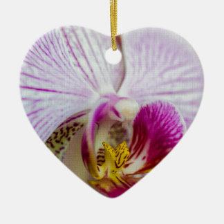 Orquídea rosada ornamento para reyes magos