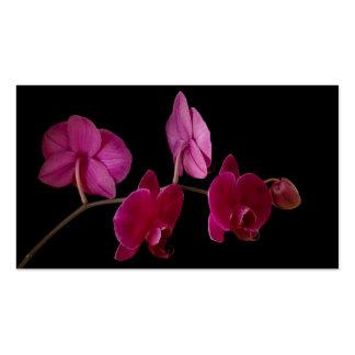 Orquídea rosada del Dendrobium en el negro - modif Plantilla De Tarjeta De Negocio