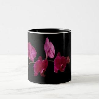 Orquídea rosada del Dendrobium en el negro - Taza De Café De Dos Colores