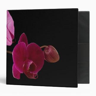 Orquídea rosada del Dendrobium - flores modificada