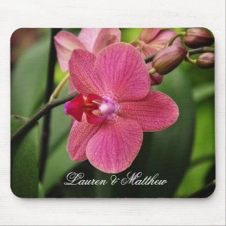 Orquídea rosada delicada mousepad