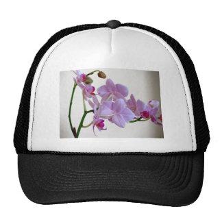 Orquídea rosada gorros bordados