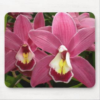 Orquídea rosada Mousepad