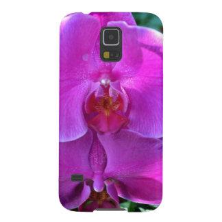Orquídea rosada oscura del Phalaenopsis Funda De Galaxy S5