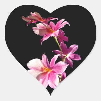 Orquídea rosada pegatina en forma de corazón