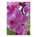 Orquídea rosada R.S.V.P. Invitacion Personalizada