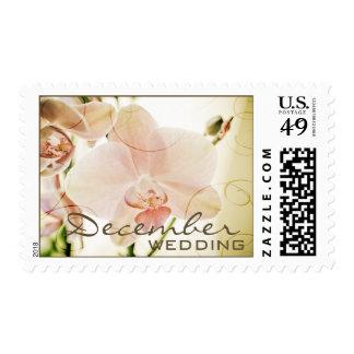 Orquídea rosada • Sello del boda de diciembre