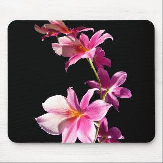 Orquídea rosada tapete de raton