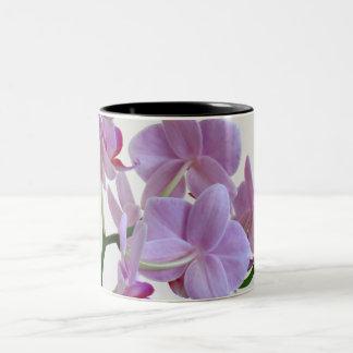 Orquídea rosada taza