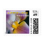 Orquídea • Sello del boda de septiembre