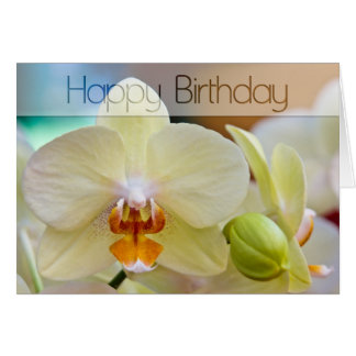 Orquídea • Tarjeta de cumpleaños