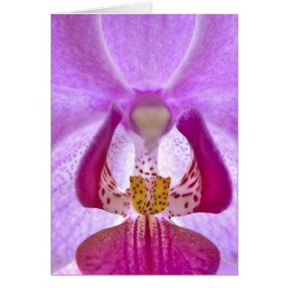 Orquídea Tarjeta Pequeña
