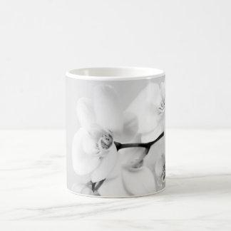 Orquídea Taza Básica Blanca