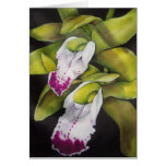 Orquídea verde del Cymbidium Tarjetas