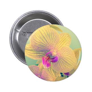 Orquídea viva pin