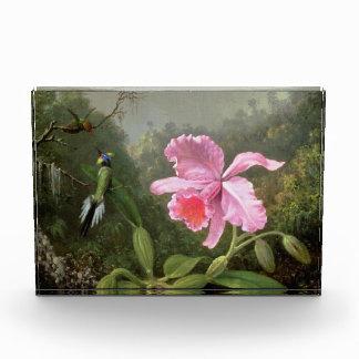Orquídea y colibríes de Martin Johnson Heade
