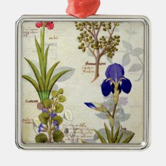 Orquídea y Fumitory o Hedera y iris del corazón Adorno Cuadrado Plateado