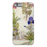 Orquídea y Fumitory o Hedera y iris del corazón Funda Para iPhone 6 Barely There