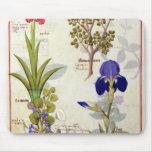 Orquídea y Fumitory o Hedera y iris del corazón sa Mouse Pad