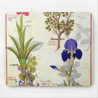Orquídea y Fumitory o Hedera y iris del corazón sa Tapete De Ratones