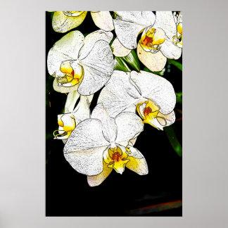 Orquídeas 1 póster