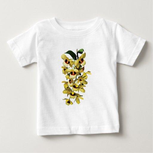 Orquídeas amarillas de la cascada playera de bebé