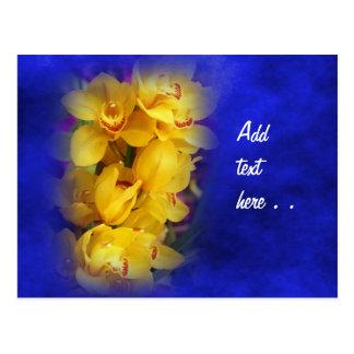 Orquídeas amarillas hermosas en fondo azul tarjetas postales