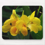 Orquídeas amarillas tapete de ratones