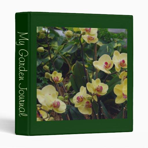 """Orquídeas amarillas y rojas bonitas del Phalaenops Carpeta 1"""""""