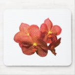 Orquídeas anaranjadas manchadas tapetes de raton