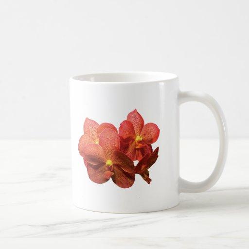 Orquídeas anaranjadas manchadas taza de café