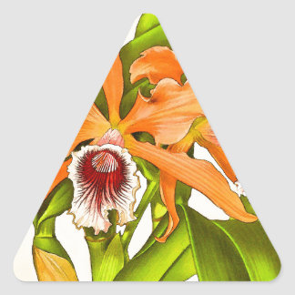 Orquídeas anaranjadas pegatina triangular