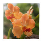 Orquídeas Azulejo Cerámica