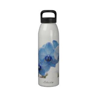 Orquídeas azules botella de beber